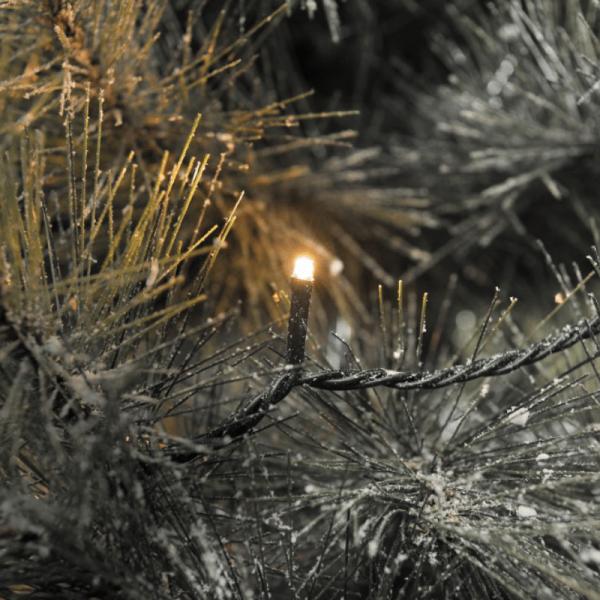 LED Microlichterkette - LED Pure - 12,64m - 80 x Ultra Warmweiß - Schwarzes Kabel - Outdoor
