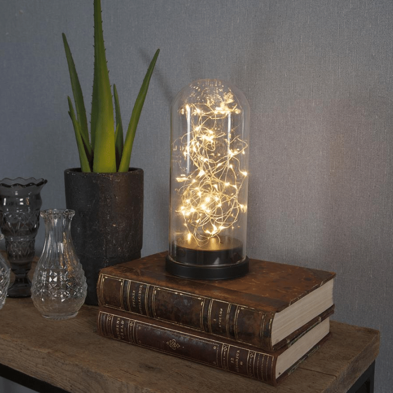 LED Lichterkette in Glaskuppel - 50 warmweisse LED - H: 25cm- D: 11cm - Batterie - Timer - schwarz