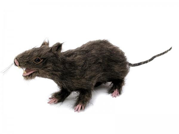 Ratte, lebensechte Optik mit Fell - 30cm - Halloween-Dekoration