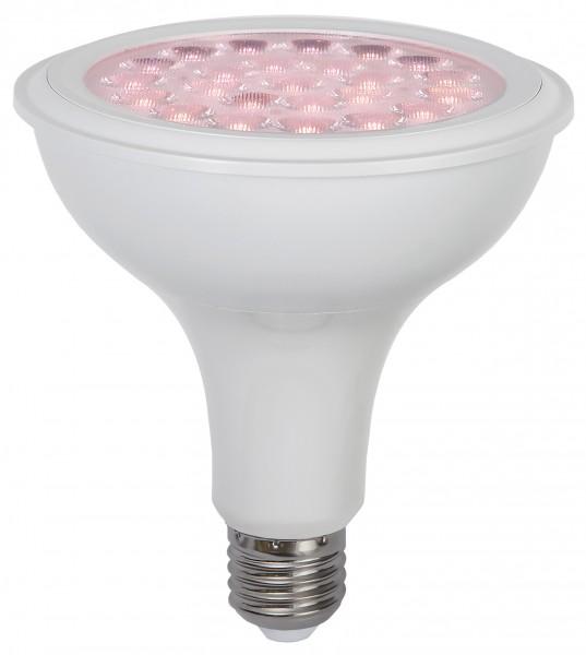 Wachstumslampe E27 - Pfanzenlampe für Kulturpflanzen und Blüher - LED Plantlight