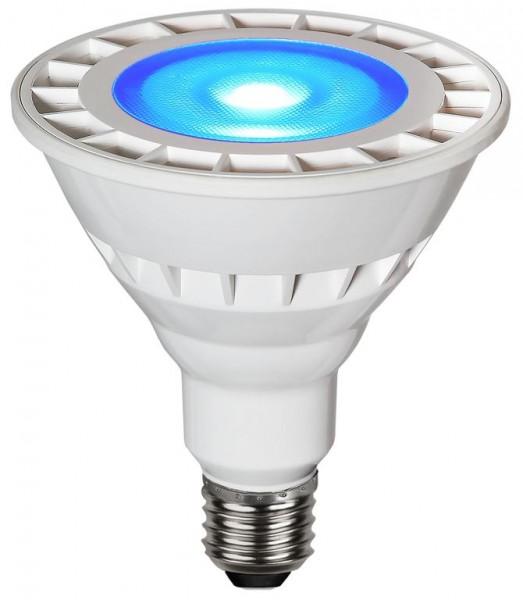 Garten-Spot-Leuchtmittel Blau | LED | Uplight | E27 | PAR38 | 15W | 35°