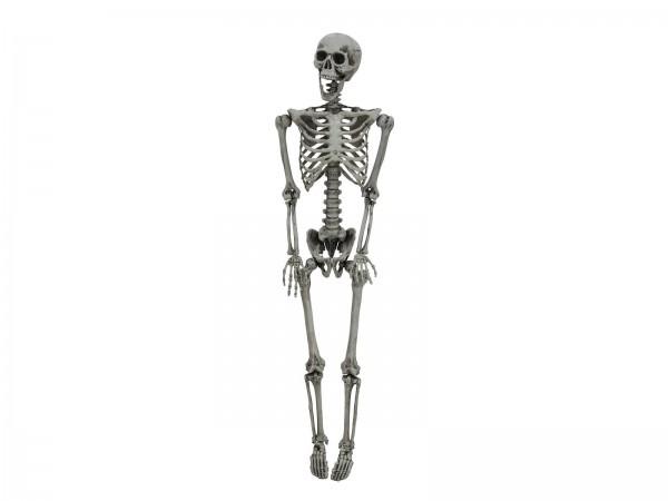 Lebensgroßes Halloween Skelett, ausgebleichte Knochen, 160cm - zum Legen oder Stellen