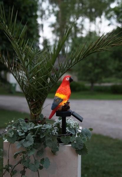 """LED-Solar Leuchte """"Goja"""" - bunter Papagei auf Stab - H: 31cm - Dämmerungssensor"""