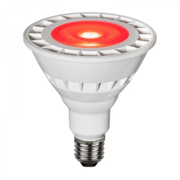 Garten-Spot-Leuchtmittel Rot   LED   Uplight   E27   PAR38   15W   35°