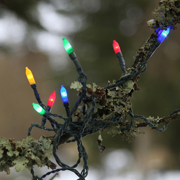 LED-Lichterkette - Garden Line Outdoor - 32m - 160x Bunt - Grün