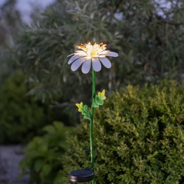 LED Solarstab Gänseblümchen - 10 warmweiße Dew Drop LED - H: 77cm - Dämmerungssensor