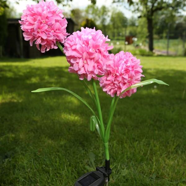 LED Solar Gartenstecker Blume - warmweiße LED - H: 70cm - Lichtsensor - rosa