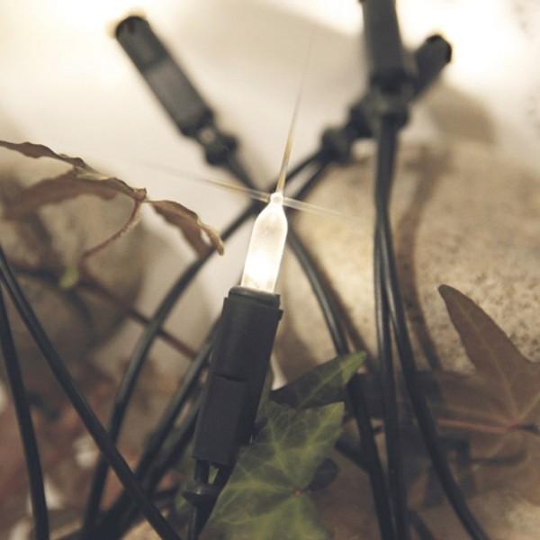 LED Mini Lichterkette Pisello - 35 warmweiße LED - L: 5,1m - grünes Kabel - gefrostet - indoor